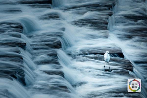 دبئی فوٹوگرافی ایوارڈز، چند خوبصورت تصاویر