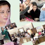 مریم صفدر اپنی سیاسی شناخت برقرار رکھنے کے لیے کوشاں 'سینئر رہنما قبول کرنے کوتیار نہیں