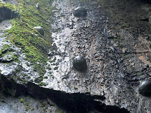 30 سال بعد انڈے دینے والا معجزاتی چینی پہاڑ
