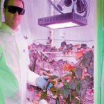 انٹار کٹیکا میں پہلی مرتبہ سبزیاں اگانے میں کامیابی