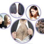ہمارے بال کیا کرتے ہیں؟