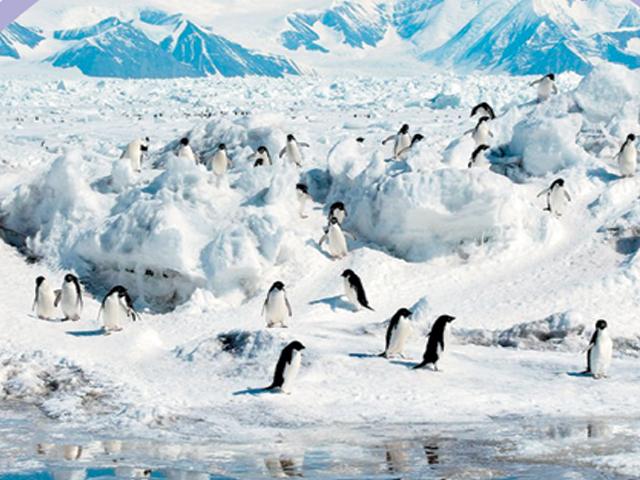 دنیا کا سردترین ٹکڑا۔۔۔قطب شمالی