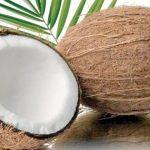 ناریل۔۔۔ ایک صحت بخش پھل
