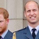 شہزادہ ہیری اور ولیم میں دراڑیں ،ایک ساتھ رہنے کا بھی عندیہ دیدیا