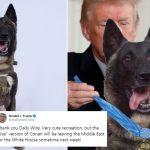 بغدادی کا کھوج لگانے والا کتا وائٹ ہائوس کا مہمان بنے گا