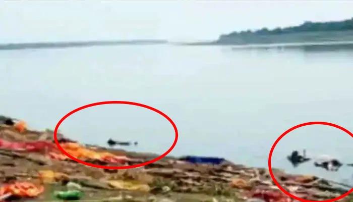 بھارت میں کورونا سے ہلاک مریضوں کی لاشیں گنگا میں بہا دی گئیں