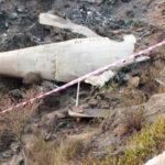 حویلیاں طیارہ حادثے کے دونوں پائلٹس کے لائسنس مشکوک نکلے