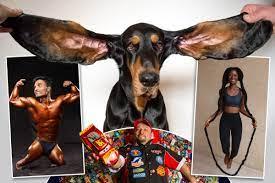 گنیز بک آف ورلڈ ریکارڈ کا ایڈیشن2022 جاری،لمبے کان والا کتا بھی جگہ بنانے میں کامیاب