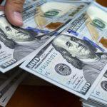 ڈالر مافیا کے 54 افراد میں سے 37 کا تعلق خیبر پختون خوا سے نکلا