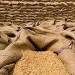 سندھ میں گندم ذخیرہ کرنے اور محفوظ رکھنے میں مشکلات کا سامنا